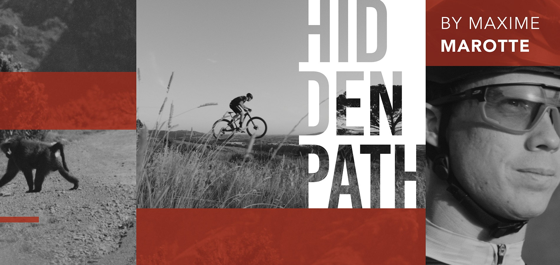 The Hidden Path EP2 – Step into the ring again