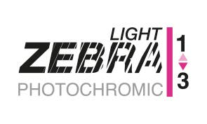 Zebra Light